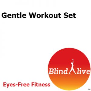 Gentle workout set of audio-described fitness routines